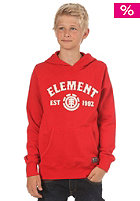 ELEMENT KIDS/ Signature F2 Boys Hooded Sweat chili