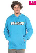 ELEMENT Player Hooded Sweat aztec