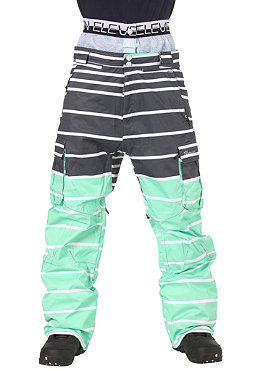 ELEVEN Hoon Pant 2012 motu green/dark grey