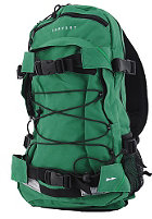 FORVERT Louis Backpack 25 L green