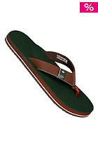 FREEWATERS The Dude Sandals brown/green