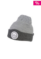 GNARLY CLOTHES Logo Beanie gray