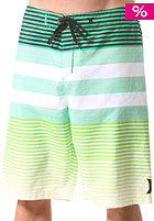 HURLEY Echo Boardshort neon green