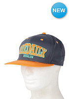 IRIEDAILY Iriedaily Team Cap steelblue