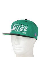 JSLV Worldwide Liv n Snapback Cap kelly green