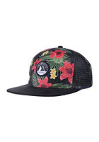 LAKEVILLE MOUNTAIN Hawaii black/multicolor