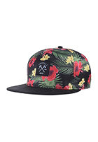 LAKEVILLE MOUNTAIN Hawaii multicolor/black