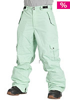 LIGHT Cern Pant 12K 2011 lime