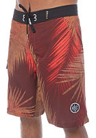 LIGHT Palm Boardshort multi