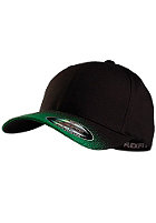 MasterDis Fade Flexfit Cap black/green