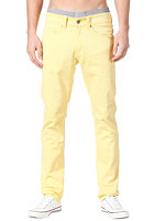 MAZINE Tube Pant sun snapdragon