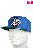MITCHELL NESS University Of North Carolina Basic Logo Snapback Cap carolina
