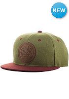 NEFF All Day Snapback Cap green