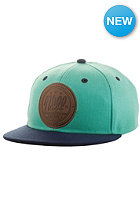 NEFF All Day Snapback Cap teal