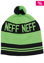 NEFF Classic Beanie 2012 green