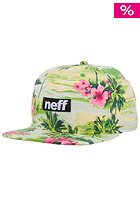 NEFF Five O Snapback Cap green