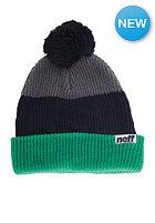 NEFF Snappy Beanie green/black/grey