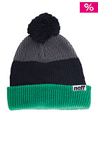 NEFF Snappy Beanie green/black/grey
