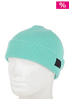NIKE ACTIONSPORTS Fisherman Beanie crystal mint