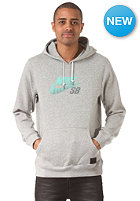 NIKE SB Icon Gradient Hooded Sweat dk grey heather/crystal mint