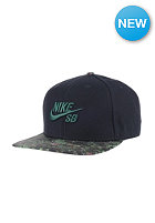 NIKE SB Seasonal black/black/gorge green