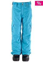NITRO KIDS/ Boys Decline Pant 2012 acid blue