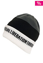 NITRO Libertad Beanie 2012 white/black/cold metal