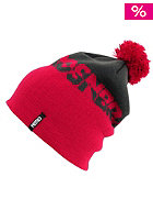 NITRO Womens Defeated Beanie 2012 cold metal/purple
