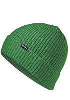NIXON Regain Beanie kelly green