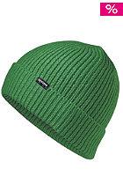 NIXON Regain Beanie kelly green
