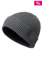NIXON Warren Beanie spruce/heather