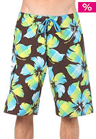 ONEILL Floater Boardies brown/aop