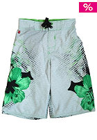 ONEILL KIDS/ Delta Boardshorts flash/green