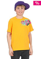 ONEILL KIDS/ Granites S/S T-Shirt golden/yellow