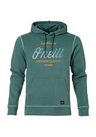 ONEILL Lucid Easy Hooded Sweat pine green