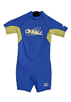 ONEILL WETSUITS Toddler Reactor Spring royal/sunburst