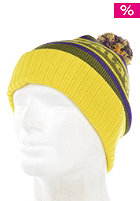 PATAGONIA Powder Town Beanie park stripe willow herb