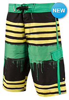 PROTEST Kids Riston JR Boardshort shamrock