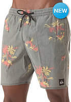 QUIKSILVER Barnacle Volley E17 Boardshort armed