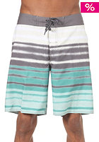 QUIKSILVER Biarritz Boardshort seaside