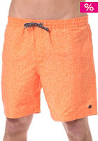 QUIKSILVER Fruit Bat 17 Boardshort popsicle