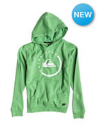 QUIKSILVER Kids Everyday H YT Hooded Sweat shamrock - solid