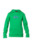 QUIKSILVER Kids God G5 B Hooded Sweat shamrock
