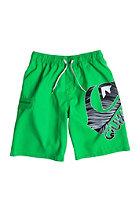 QUIKSILVER Kids Logo VL Y18 shamrock - pattern_1