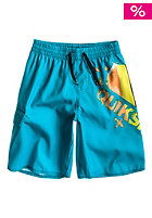 QUIKSILVER Kids Mountain Wave Logo Vl E18 Boardshort cyan