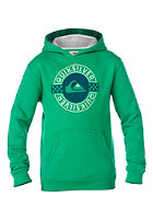 QUIKSILVER Kids Rib B5 B Hooded Sweat shamrock