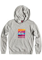 QUIKSILVER Kids Rib F1 Hooded Sweat light grey heat