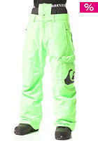 QUIKSILVER Planner Snow Pant green gecko