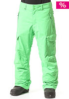 Porter Ins Snow Pant poison green