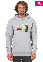 QUIKSILVER Rib Hooded Sweat light grey heat